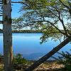 Wood Lake 04
