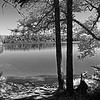 Wood Lake 07 B&W