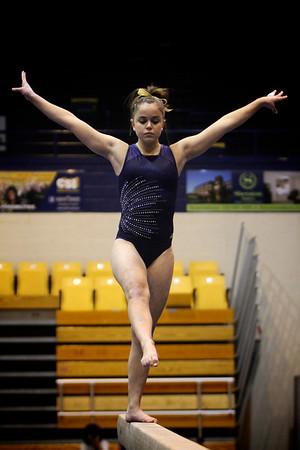2013 Kent State University Women's Gymnastics