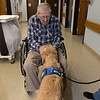 LCC K-9 Comfort Dogs visit The Lutheran Home of Southbury (CT)<br /> <br /> Pictured is Comfort Dog Addie
