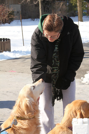 2013 February K9 Comfort Dogs at Brookfield Zoo