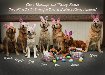 2013-03-28 K-9 Comfort Dog Easter Pictures