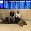 Just hanging out with United Airlines waiting for boarding time (Ruthie Comfort Dog)