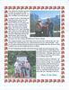 2013 Furnish Family Letter_0002