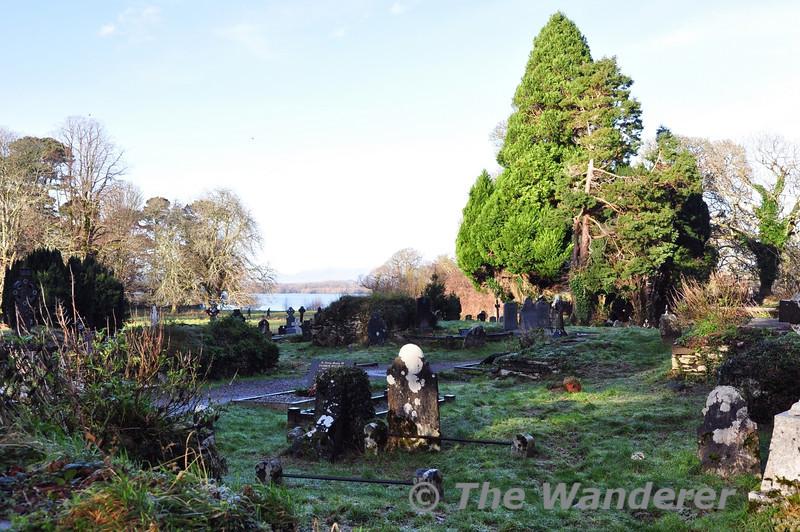 Muckross Abbey. Killarney National Park. Wed 25.12.13