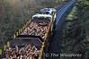 073 and laden Timber train at Portarlington. Thurs 19.12.13