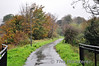 The Great Western Greenway in Westport. Looking towards Achill. Sat 02.11.13