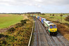 215 ambles through the Curragh with the 1105 Ballina - North Wall IWT Liner. Wed 20.11.13