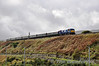 8113 is pictured at Newry with the 1155 Dundalk - Whitehead RPSI Across the Tracks Charter. Sun 20.10.13