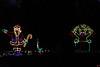 Run under the Lights - 2013 - Photo by Jim Rich