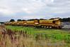 A rake of Ballast Wagons are currently awaiting loading at Portarlington. Wed 25.09.13