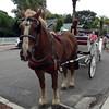 Fernandina Beach transport
