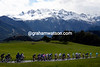 The peloton looks graceful as it too descends towards the finale in the French Alps...