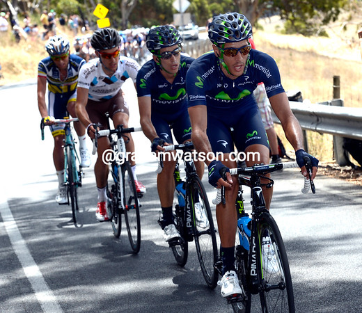 Capecchi's quartet is in front near the summit of Old Willunga Hill, and actually pulling away...