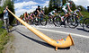 The peloton is serenaded by a local man playing an Alpine Horn...