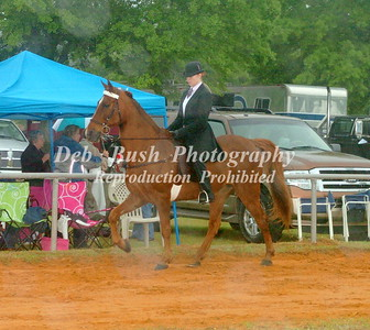 CLASS 20 LITE SHOD AMATEIUR OWNED & TRAINED CANTER