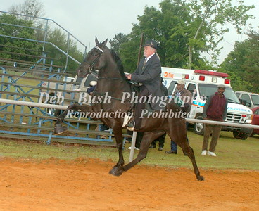 CLASS 22 AMATEUR 50 YRS & OLDER RIDER SPECIALTY