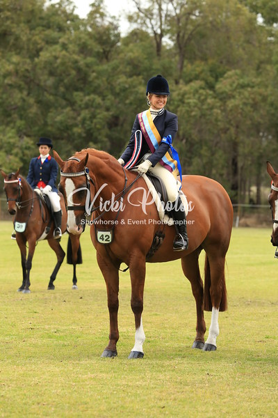 Classes 1 and 2 inc Champion Adult and Senior Rider