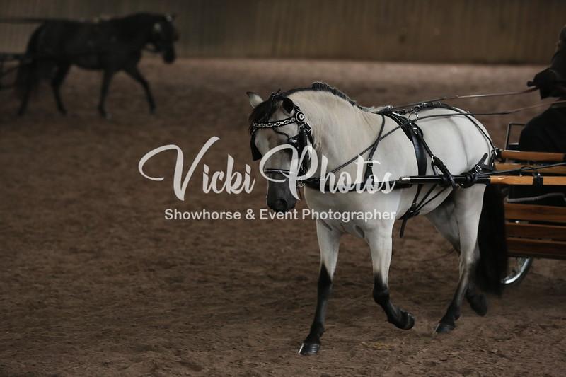 253_Vicki _13-03-10