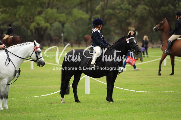 Serpentine Gala Hack & Hunter Spectacular  -  13.4.2013