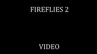 79   FIREFLIES