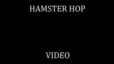 45   HAMSTER HOP