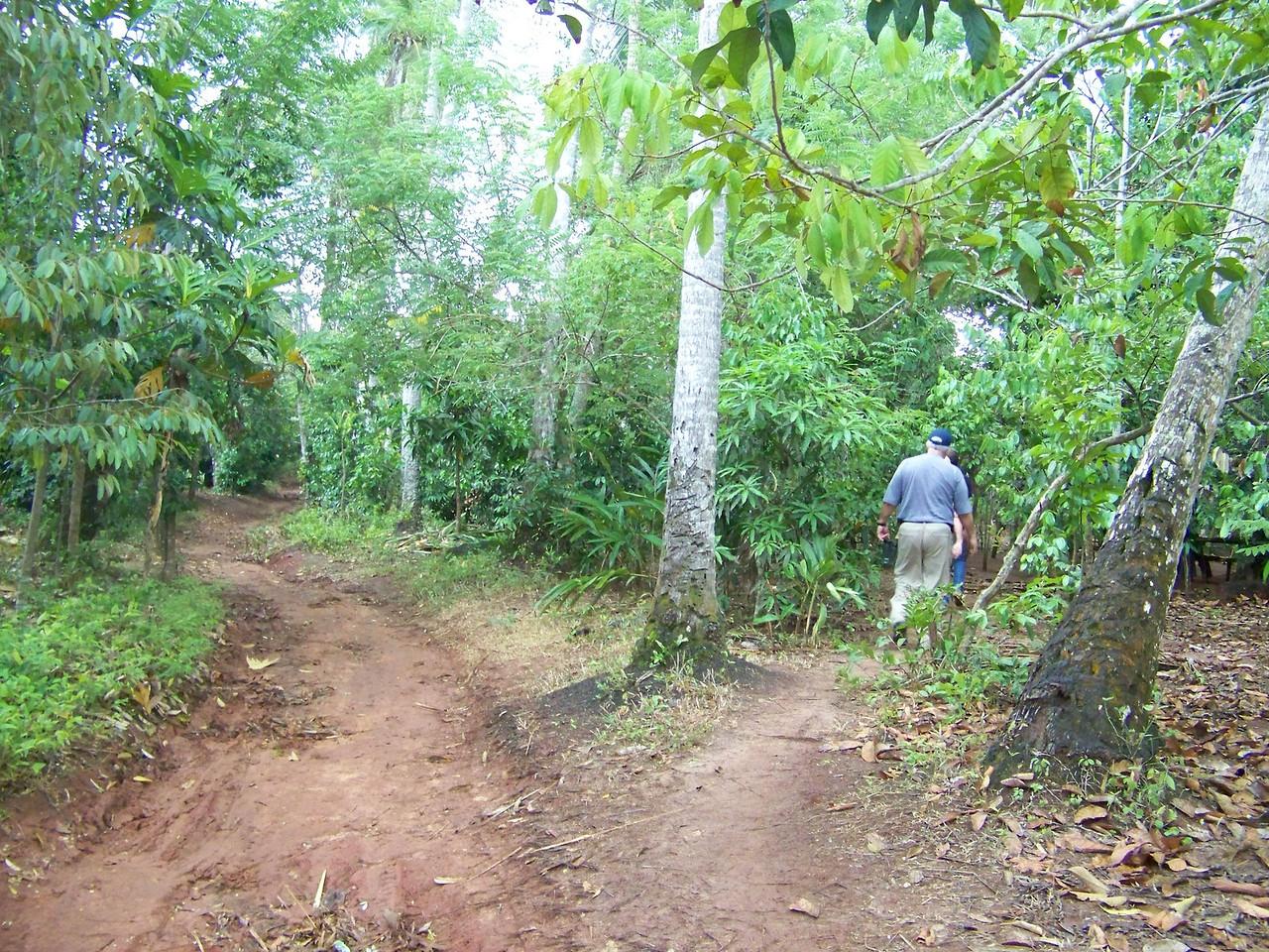 1004 - Tour of Spice Plantation - Zanzibar - Tanzania.JPG