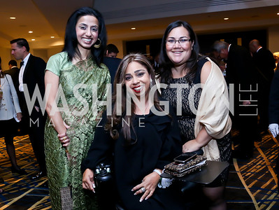 Ayesha Chaudhry, Juliette Rizzo, Alexis Perlmutter. Photo by Tony Powell. Heroines in Technology. Hilton McLean Tysons Corner. November 8, 2013
