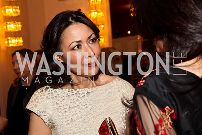 Ann Curry. Photo by Tony Powell. Vital Voices Global Leadership Awards. Kennedy Center. April 2, 2013