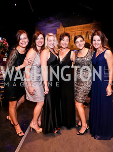 Lois Willcox, Erin Wolff, Heidi Rodgers, Jill Park, Laleh Jalali, Maribeth Burg. Photo by Tony Powell. 2013 Wolf Trap Ball. September 21, 2013