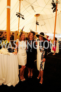Roxanne Pincus,Liz Ordan,Sally Akridge,May 2,2013,6th Annual Benefit Lincheon for The Trust for the National Mall,Kyle Samperton