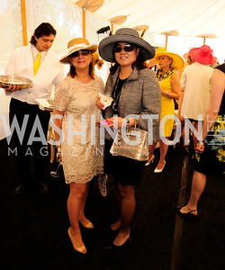 Fariba Jahanbani,EunYoung Kim,May 2,2013,6th Annual Benefit Lincheon for The Trust for the National Mall,Kyle Samperton