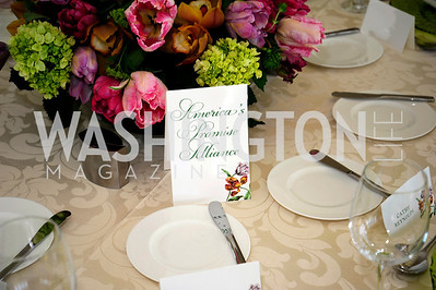 A Luncheon for Alma Powell, March 7,2013,Kyle Samperton