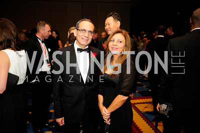 Egyptian Amb.Mohamed Tawfik,Amani Tawfik,,September 11,2013,Ambassadors Ball,Kyle Samperton