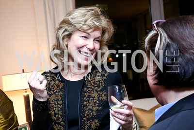 Debbie Birx. Photo by Tony Powell. Breast Cancer Fundraiser for Shinkai Karokhail. Residence of Nancy Brinker. December 17, 2013