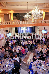 Photo by Tony Powell. 2013 Caron Foundation Recovery for Life Gala. Museum of Women in the Arts. October 8, 2013