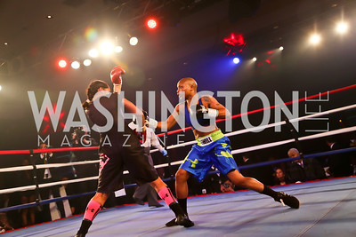Photo by Tony Powell. 2013 Fight Night. Hilton Hotel. November 14, 2013