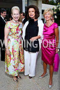 Jeannie Rutherfoord, Aniko Gaal Schott, Susan Colby. Photo by Tony Powell. French Historical Society Benefit Dinner. La Maison Française. May 15. 2013