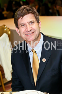 Rep. Brad Schneider. Photo by Tony Powell. Global Down Syndrome Foundation Gala. Ritz Carlton. May 8, 2013