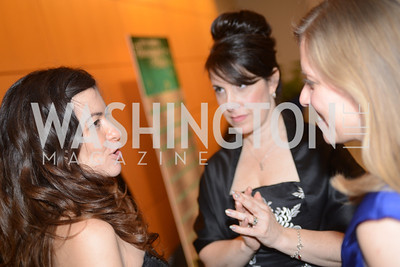 Leilani Munter, Shelley Cohen, Suzanne Hunt, The Inaugural Green Ball on Sunday, January 20th , 2013. Newseum.
