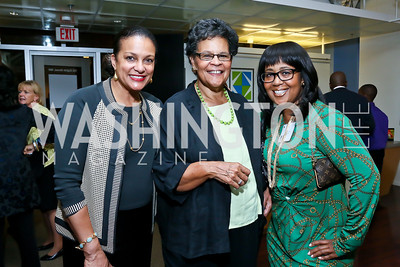 """Debbi Jarvis and Charlene Drew Jarvis, Charlotte Reid. Photo by Tony Powell. """"Courage on Canvas"""" Exhibit Opening. Pepco Edison Place Gallery. October 2, 2013"""