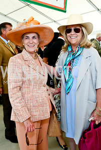 Barbara Jean Allbritton, Cathy Stevens. Photo by Tony Powell. NSLM 2013 Benefit Polo Match and Luncheon. Llangollen Estate. September 15, 2013