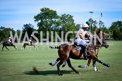 Photo by Tony Powell. NSLM 2013 Benefit Polo Match and Luncheon. Llangollen Estate. September 15, 2013