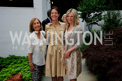 Susan Rappaport,Tamera Luzzatto,Kay Kendall,June 3 ,2013,Reception for dcgreens,Kyle Samperton