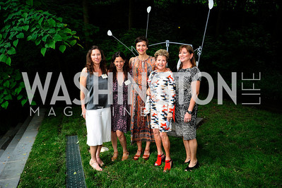Sarah  Bernardi,Lauren Shweder Biel,Maggie Gyllenhaal,Anne Brown,Shelley Holt,June 3 ,2013,Reception for dcgreens,Kyle Samperton