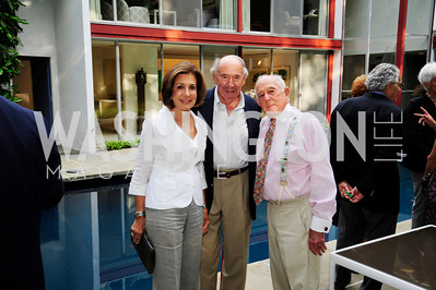 Arlene Cherner,Harvey Cherner,Don Brown,June 3 ,2013,Reception for dcgreens,Kyle Samperton