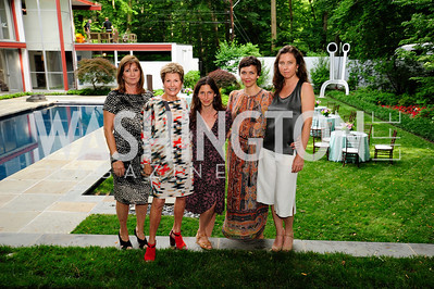 Shelley Holt,Ann Brown,Lauren Shweder Biel,Maggie Gyllenhaal,Sarah Bernardi,June 3 ,2013,Reception for dcgreens,Kyle Samperton