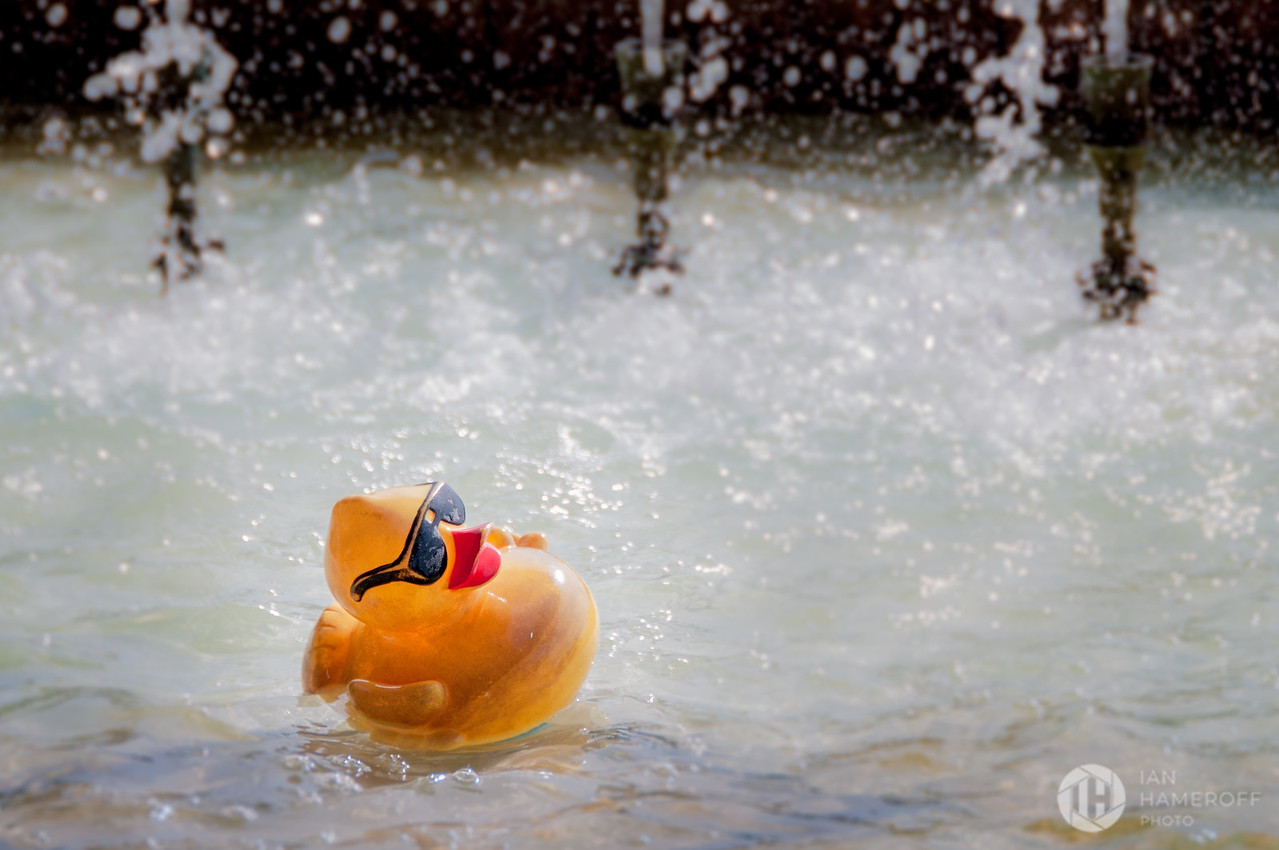 Rock and Rollin' Rubber Duck