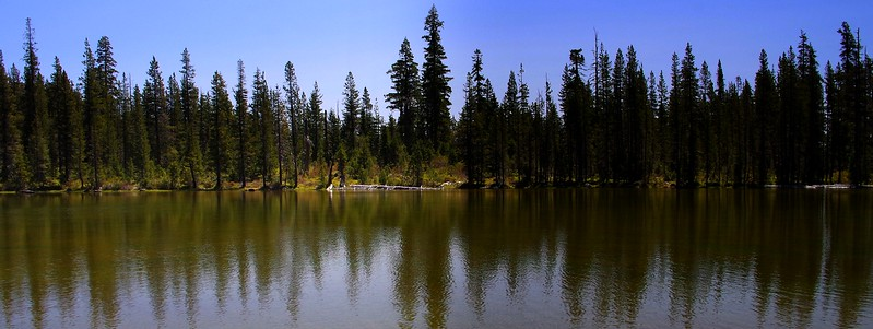 Azalea Lake Fir Glade Red Buttes Wilderness California