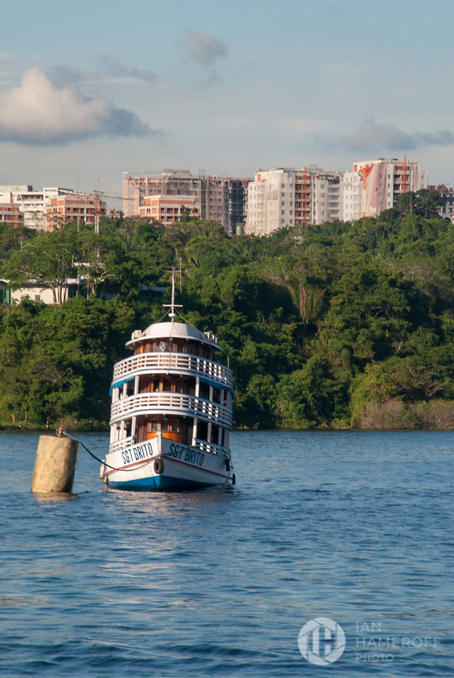 Amazonas River Life